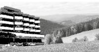 Schönwald_preview